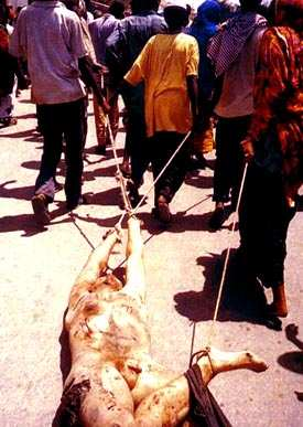 Somali girl stripping - 3 part 2
