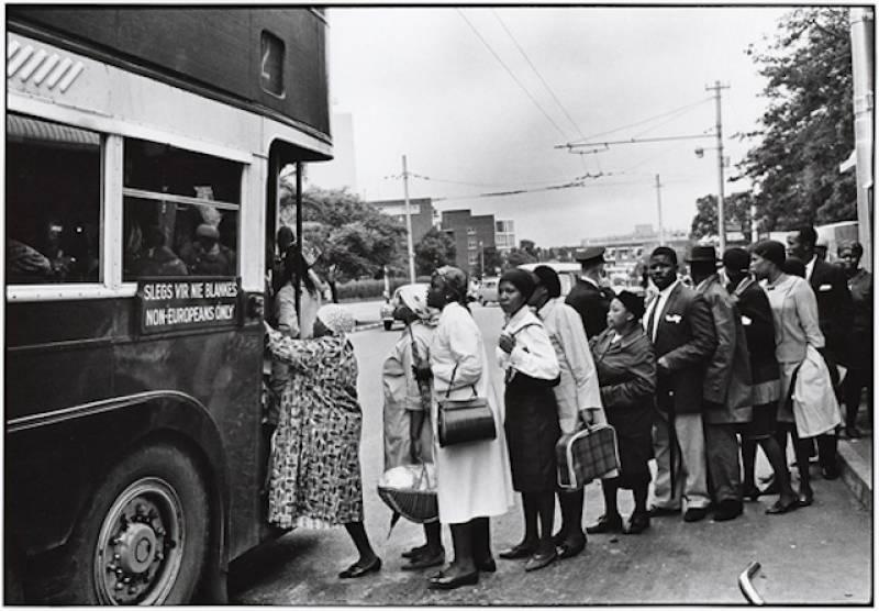 neri-autobus