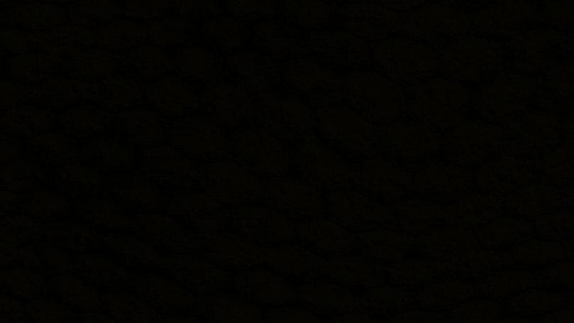 6198987-black-pic